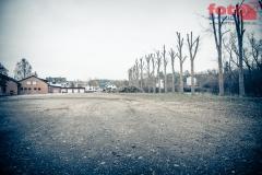 web_FOTO-EHRLICH-2533