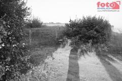 web_FOTO-EHRLICH-0826