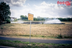 web_FOTO-EHRLICH-0872