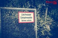 web_FOTO-EHRLICH-1510