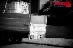 FOTO-EHRLICHweb-0924