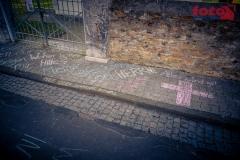FOTO-EHRLICHw-7219